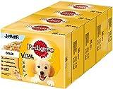 Pedigree Vital Protection Hundenassfutter für Welpen im Beutel –...