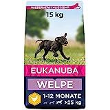 Eukanuba Welpenfutter mit frischem Huhn für große Rassen - Premium...