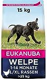Eukanuba Welpenfutter mit frischem Huhn für große Rassen, Premium...