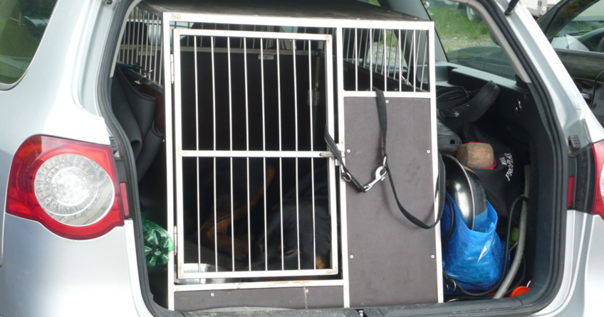 Hundetransportbox aus Alu